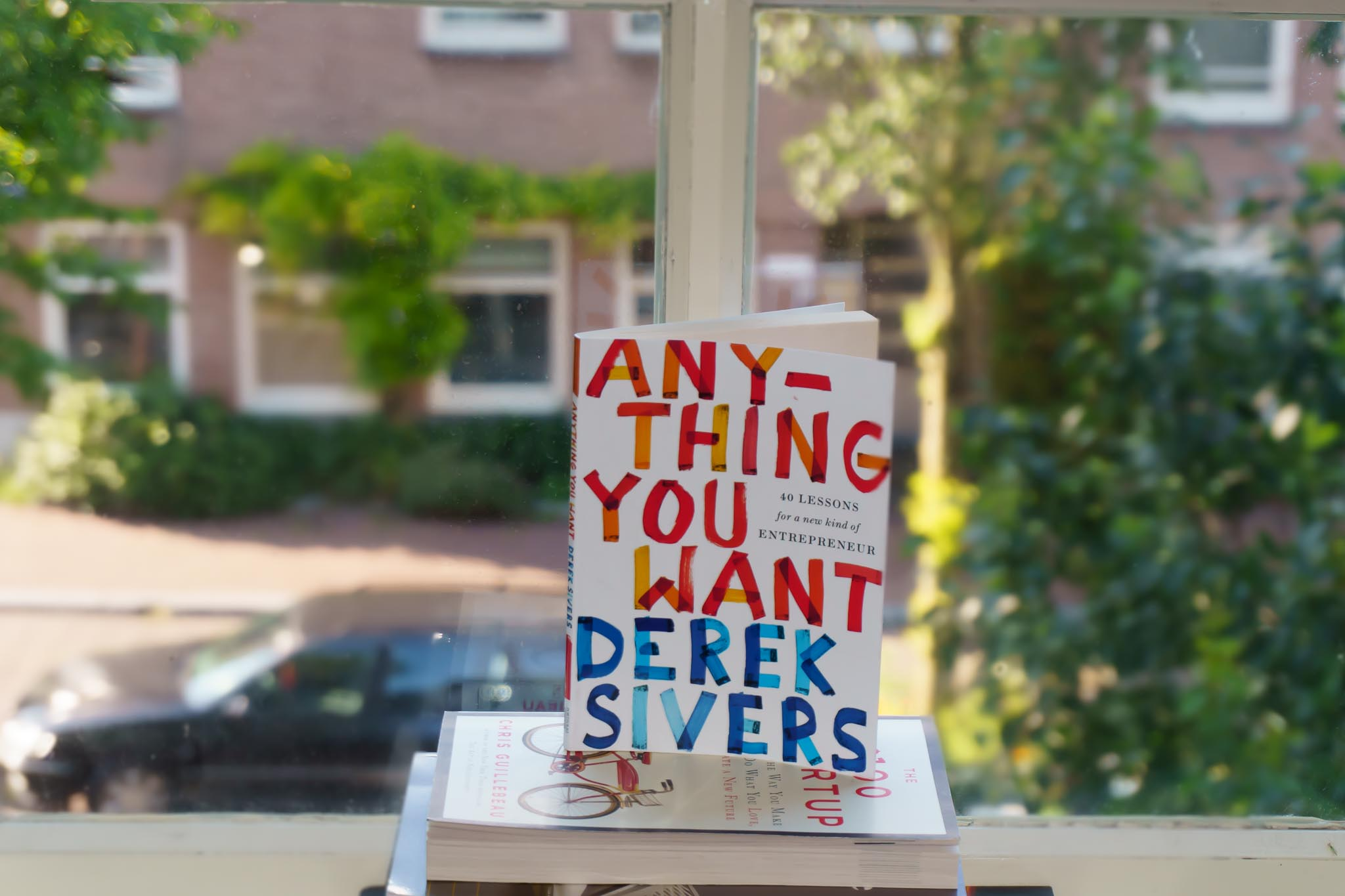 Anything You Want Book - Derek Sivers